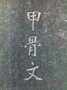 20091013570
